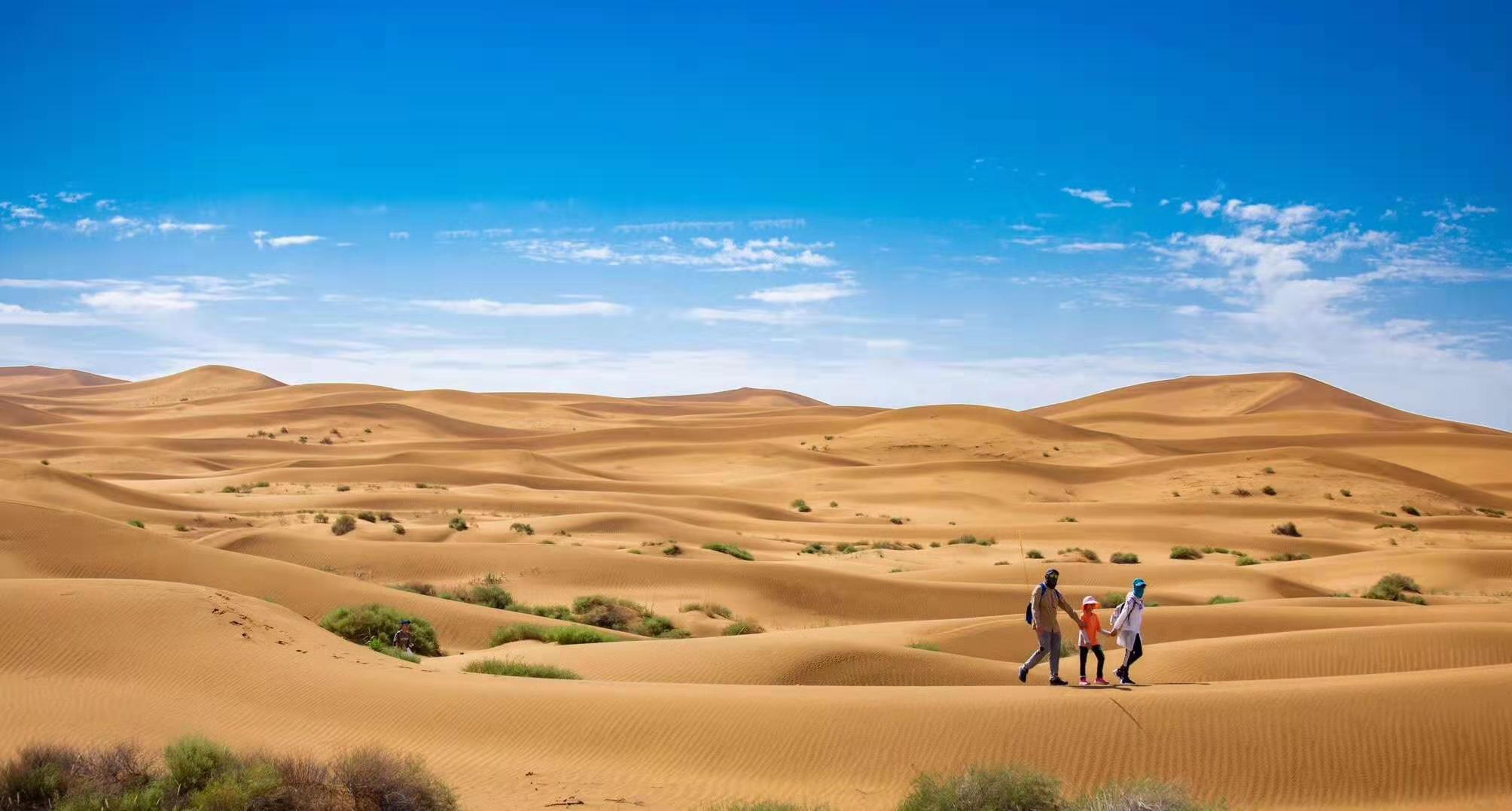 和沙漠的一百天图片_2019亲子征战腾格里沙漠-童游-亲子童游看世界·总有更好的亲子游